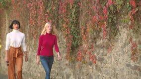 走充满秋天心情的女孩 ?? 少女坐秋天落叶在公园 秋天天 股票视频
