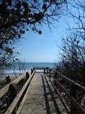 走到海滩 库存图片
