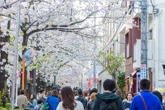 走和享用在Meguro河,东京,日本的人们 免版税图库摄影