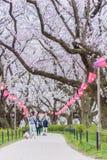 走和享用樱花的人们在日本 库存图片