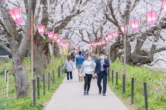 走和享用樱花的人们在日本 库存照片