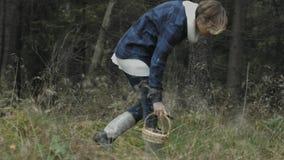 走和采摘蘑菇 影视素材