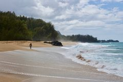 走在一个有风海滩的匿名人 库存图片