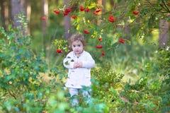 走在一个美丽的秋天公园的逗人喜爱的女婴 库存图片