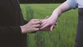 走在一块绿色麦田的两三个同性恋者拿着两个同性恋者的手的handsA特写镜头,他们投入了婚戒o 影视素材