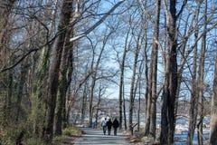 走在一清楚的温暖的3月天的人们在里士满, Viginia 免版税库存照片