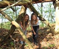 走在下落的树干下的女孩 库存图片
