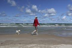 走在与一条小白色狗的一个休伦湖海滩的妇女 免版税库存照片