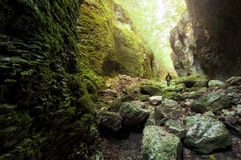 走在与岩石的山谷的人 库存照片