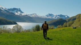 走在与惊人的山风景挪威的绿草小山的旅行人 影视素材