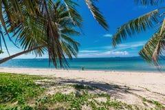 走在与棕榈树的美丽的热带海滩的少妇 免版税库存照片