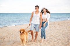 走在与狗的海岸的浪漫美好的夫妇 库存图片