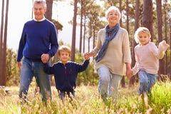 走在乡下的祖父母和孙 库存照片