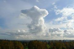 走在云彩的巨型熊 免版税库存图片