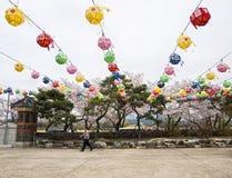 走在五颜六色的纸灯下的年长韩国人 免版税图库摄影