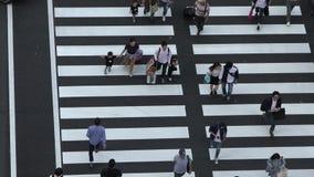 走在交叉点东京站丸之内的人鸟瞰图人群  股票视频