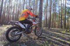 走在体育在森林里骑自行车 库存图片