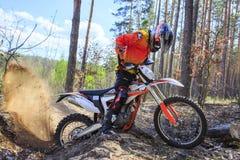 走在体育在森林里骑自行车 免版税库存照片