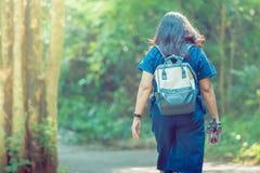 走在供徒步旅行的小道的后面观点的人在森林 库存图片