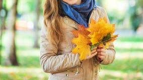 走在公园和拿着秋叶的美丽的女孩 库存图片