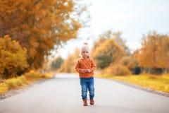 走在公园的可爱的小孩女孩在美好的秋天天 库存图片
