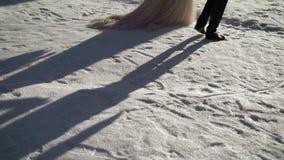 走在公园的新娘和新郎在冬天 股票录像