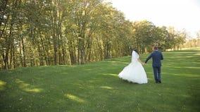 走在公园的新娘和新郎,亲吻 股票视频