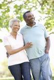 走在公园的浪漫资深非裔美国人的夫妇 库存照片