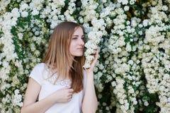 走在公园的美丽的妇女在白色开花的树附近 库存照片