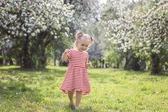 走在公园的逗人喜爱的女孩在一个夏日 库存照片