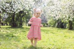 走在公园的逗人喜爱的女孩在一个夏日 免版税库存照片