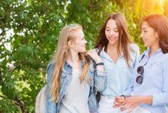 走在公园,谈话和微笑反对树的三名美丽的女孩学生 免版税图库摄影