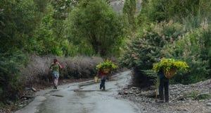 走在农村路的藏族 免版税库存图片