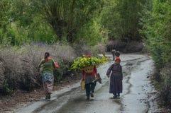走在农村路的藏族 免版税图库摄影