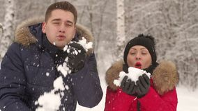走在冬天公园和微笑的爱恋的夫妇 影视素材