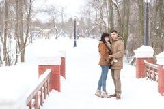 走在冬天公园的一对爱恋的夫妇 免版税库存图片