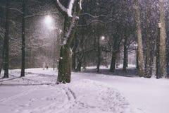 走在冬天公园的人们在晚上 在冻结的黑暗pa的雪 免版税库存照片