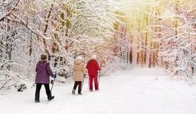 走在冬天公园的北欧人 免版税库存照片
