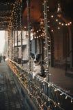 走在冬天城市的博德牧羊犬狗 库存照片