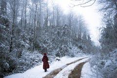 走在冬天森林里的妇女 库存图片