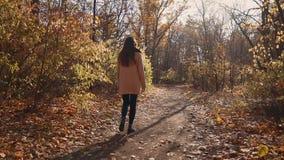 走在单独森林里的女孩 影视素材