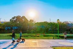 走在台北商展公园的人们 库存图片