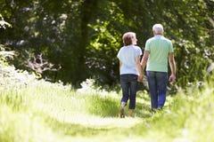 走在夏天乡下的资深夫妇背面图  免版税库存图片