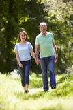 走在夏天乡下的资深夫妇 免版税库存图片