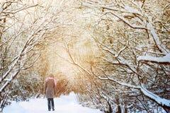 走在多雪的森林里的妇女 免版税库存照片