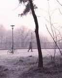 走在多雪,都市冬天风景的人 免版税库存图片