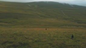 走在小山的绿色领域的人们在山从飞行寄生虫的谷视图 影视素材