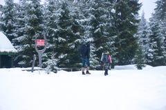 走在山在冬天 库存照片