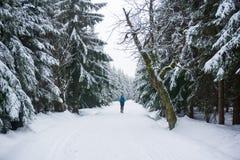 走在山在冬天 免版税库存图片