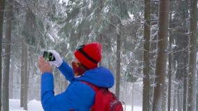 走在山的一个冬天积雪的具球果森林的孤独的旅游女孩和拍自然照片在a的 股票视频